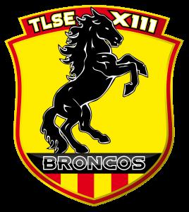 TLSE_logo broncos 2010_PRINT-01