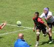 stade toulousain montpellier rugbyamateur (2)