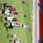 stade toulousain montpellier rugbyamateur (4)