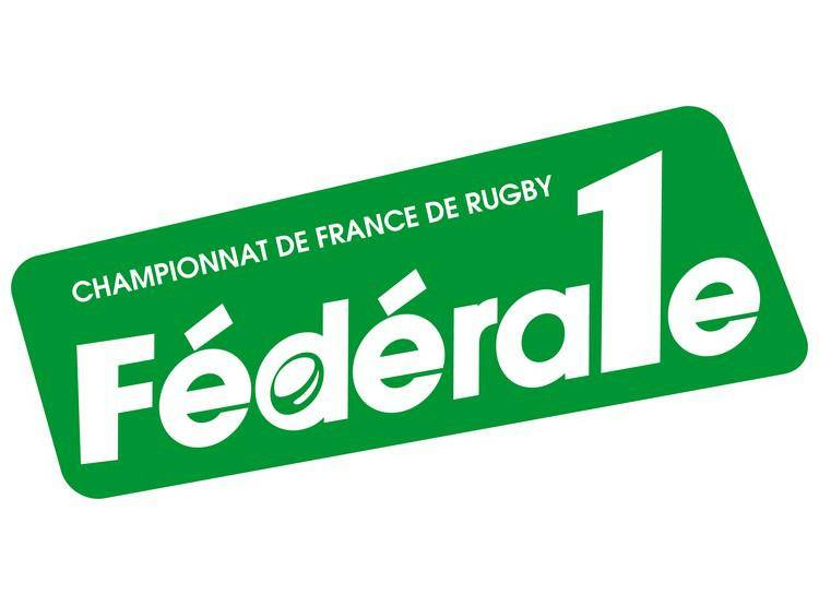 Federale-1-Vers-une-poule-d-accession_actu_fiche