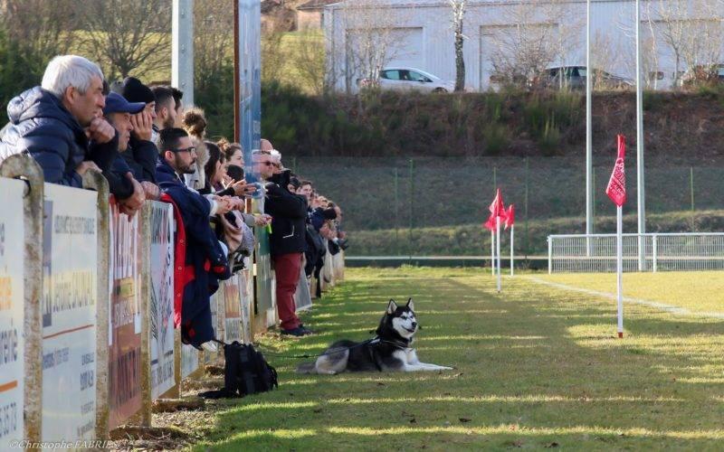 Le Canton d'Alban est vraiment une équipe qui a du chien cette année (photo C. Fabries)