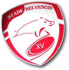Stade Belvesois