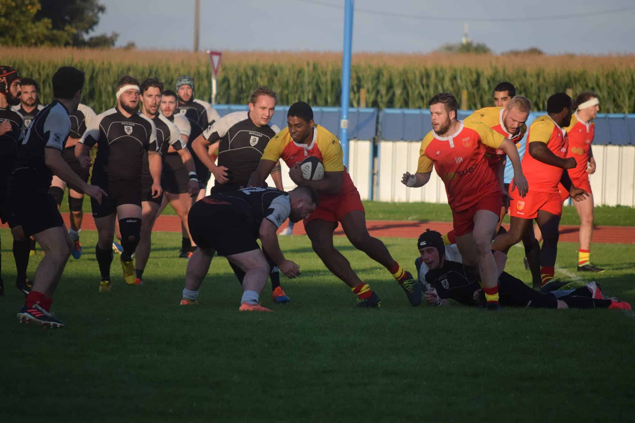 lille   marquette, photo Lille Rugby Club