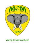 Club Alsace  > BAS RHIN  > MOLSHEIM recherche entraîneur(s)